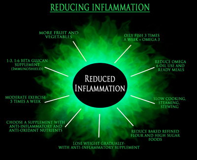 Inflamm-Ageing ebook NutriShield Multi Vitamins and Minerals