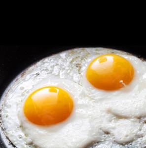 egg NutriShield Multi Vitamins and Minerals