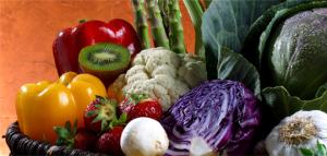 scientImg4 NutriShield Multi Vitamins and Minerals