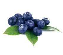 blueberries-F-213x185 NutriShield Multi Vitamins and Minerals
