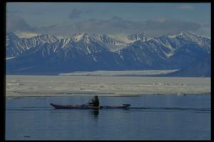 Arctic fisherman-Corel NutriShield Multi Vitamins and Minerals