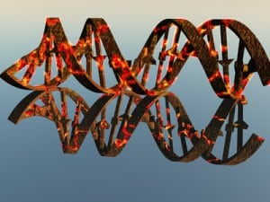 Damaged DNA Strands NutriShield Multi Vitamins and Minerals