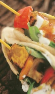 Marinated chicken kebabs NutriShield Multi Vitamins and Minerals