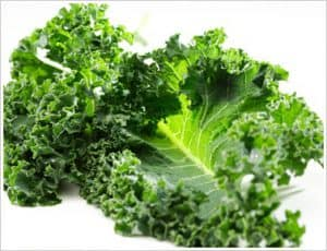 kale NutriShield Multi Vitamins and Minerals