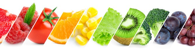 Make a good diet into a GREAT diet NutriShield Multi Vitamins and Minerals