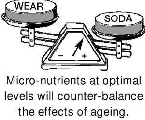 Scales-wear-SODA NutriShield Multi Vitamins and Minerals