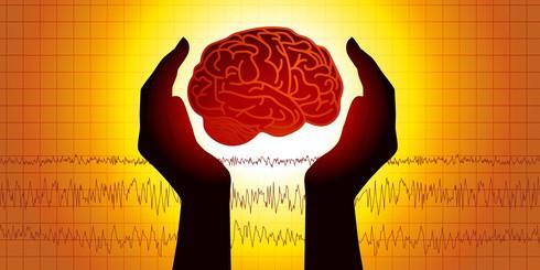 B vitamins stop pre-Alzheimer's brain shrinkage NutriShield Multi Vitamins and Minerals