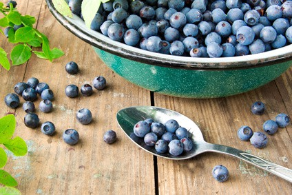 Bilberry for more than just eye health NutriShield Multi Vitamins and Minerals